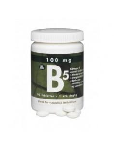 B5 100 mg - 90 tabl.