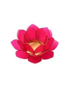lotus stage dark pink 11 cm
