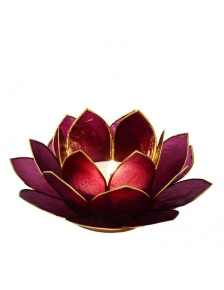 Lotus Stager, rød violet 14 cm.