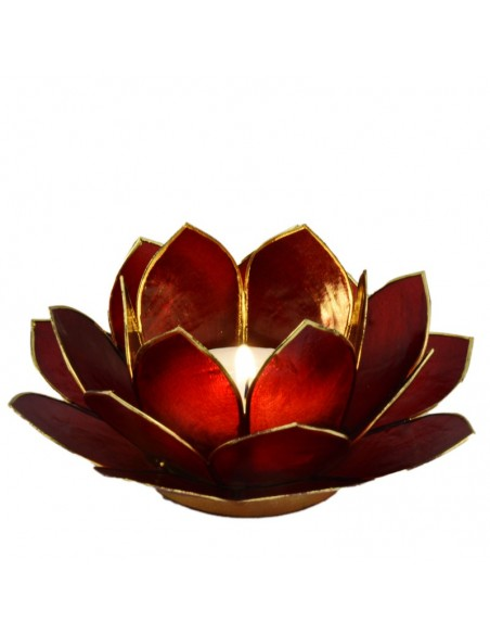 Lotus Stager, rød burgundy 14 cm.