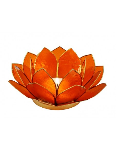 Lotus Stager, orange 11 cm.