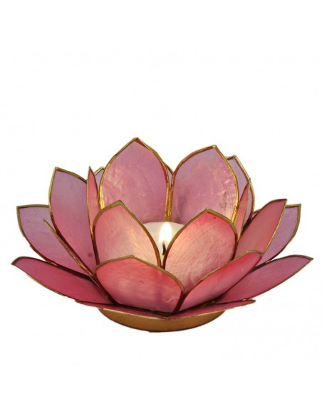 Lotus Stager, Lotus blossom 14 cm.