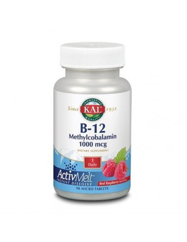 B 12 Methylcobolamin 90 tabletter