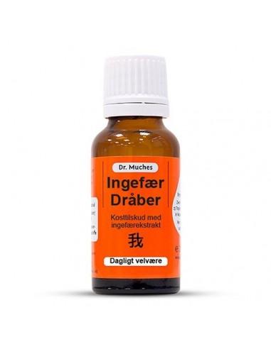 Dr muches ingefaer