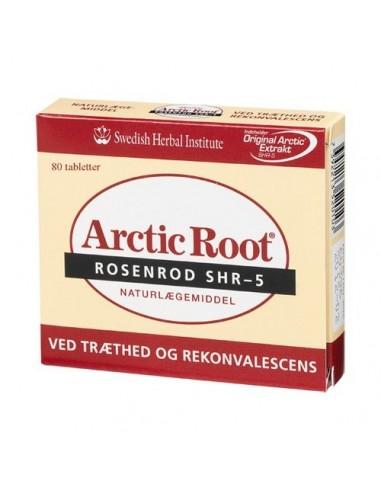 Anjo Arctic Root rosenrod