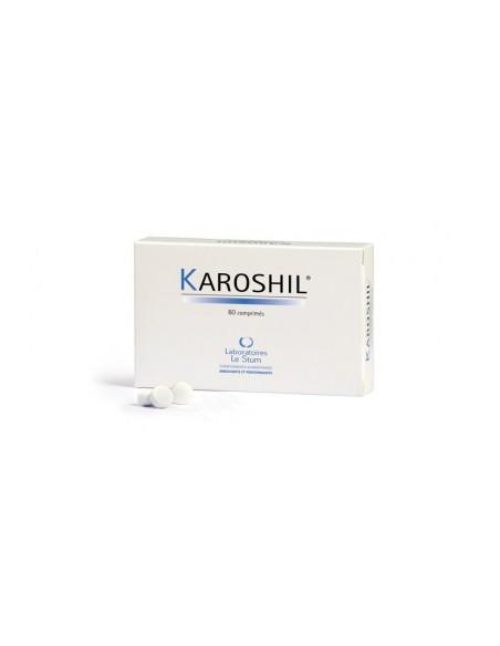 Karoshil - NDS
