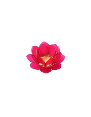 lotus stage dark pink 11 cm