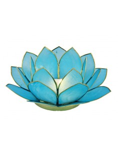 Lotus Stage Light Sea Blue 14 cm fra NaturPoteket.dk