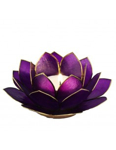 Lotus Stage, Ultra Violet 14 cm fra NaturPoteket.dk