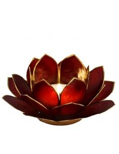 Lotus Stager, Red Burgundy 14 cm fra NaturPotekeet.dk