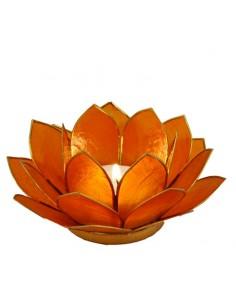 Lotus Stage, Orange 14 cm fra NaturPoteket.dk