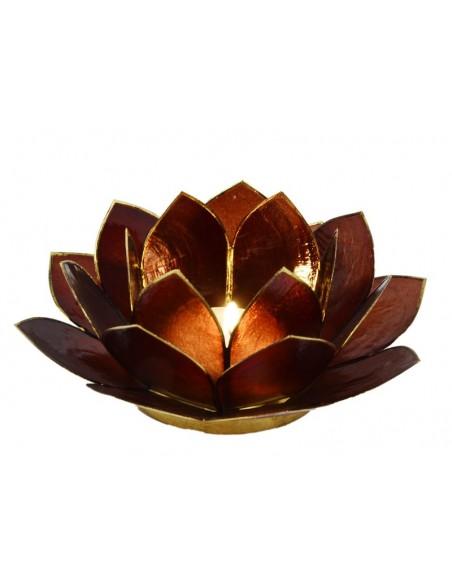 Lotus Stager, Mørk Brun 14 cm.