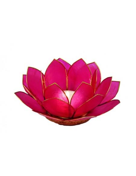 Lotus Stager, medium pink 11 cm.