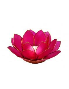 Lotus Stage, Medium Pink 14 cm fra NaturPoteket.dk