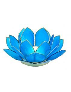 Lotus Stage, Dark Sea Blue 11 cm fra NaturPoteket.dk