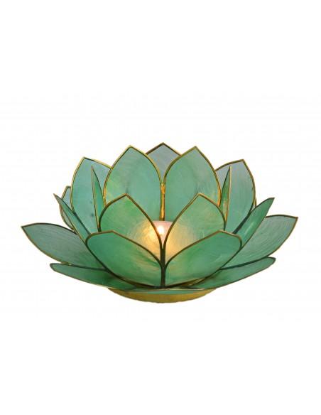 Lotus Stager, æblegrøn 14 cm.