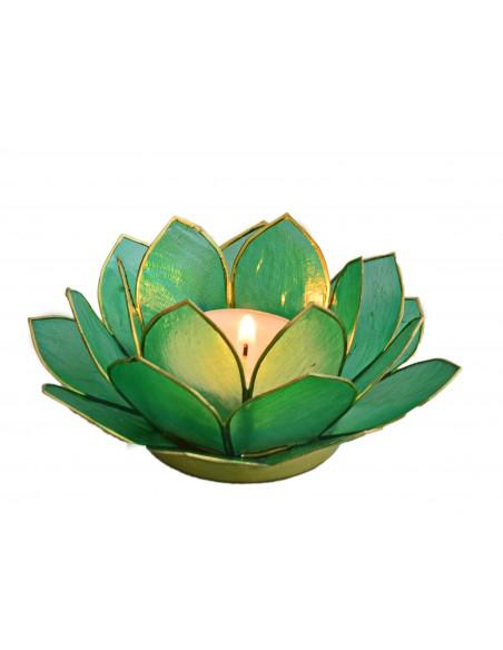 Lotus Stager, æblegrøn 11 cm.
