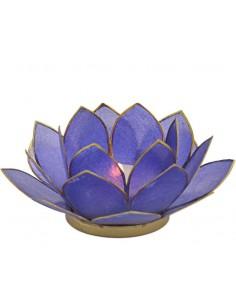 Lotus stager, 11 cm Klien Blue fra NaturPoteket.dk