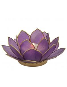 Lotus Stager, Klien Blue, lilla 14 cm fra NaturPoteket.dk