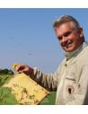 Thybi Økologisk Honning